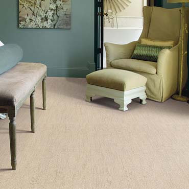 Caress Carpet by Shaw | Schenectady, NY